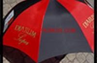 contoh payung1